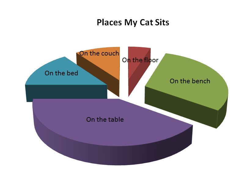 Updated Pie Graph